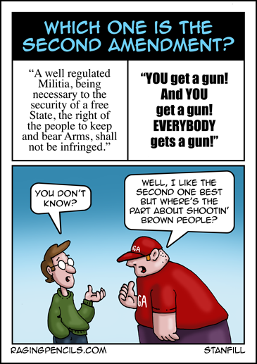 Progressive comic about ignorance of the second amendment